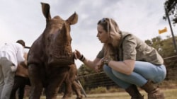 Documentary explores women fighting poachers in Africa