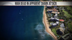 Man dies after shark attack in Hawaii