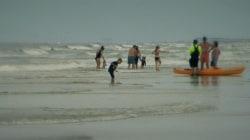 911 call reveals frantic moments after shark attack