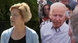 Big change or big win? Democratic primary field divides over goals