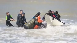 Orcas stranded on Argentina beach rescued by beachgoers