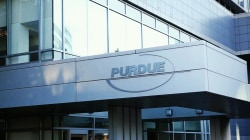 Are Purdue Pharma owners hiding their wealth?