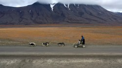 Climate in Crisis: The changing sport of dog sledding