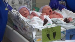 Twin birth rate at lowest level in a decade