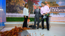 Fall cleanup: Tools to keep your lawn tidy