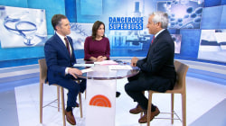What is a superbug and what can they do?
