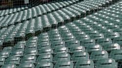 All Major League Baseball teams will extend protective netting