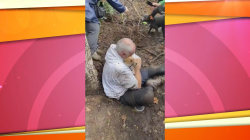 Watch this man dig his stuck dog out of a hole with his bare hands