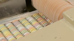Smarties: Meet the sisters who keep the candy rolling