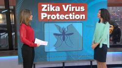 Zika Virus on the move: How to protect yourself