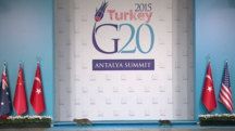 Stray Cats Strut Across G20 Stage