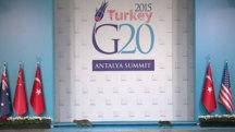 Stray Cats Strut Across G20 Stage