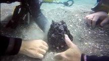 1,600-Year-Old Shipwreck Reveals Roman Secrets