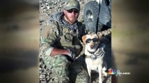 Meet the Woman Reuniting Vets With Their Retired Service Dogs