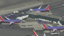Southwest Airlines website glitch grounds hundreds of flights