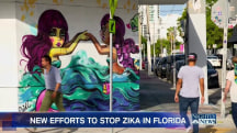 South Florida Businesses Worried Zika Will Keep Visitors Away