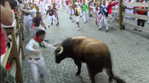 Seven Gored in One Day at Pamplona's Running of the Bulls