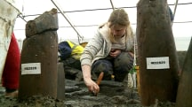 Rare Bronze Age Dig Reveals What Life Was Like 3,000 Years Ago