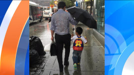 'Umbrella dad' wins the Internet