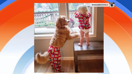 Dog and toddler rock matching outfits and conquer Instagram