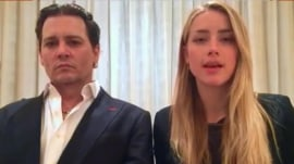 Johnny Depp and Amber Heard's dog decision Down Under: Is it fair?