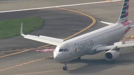 Bird strike forces American Airlines jet to make emergency landing