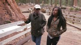 Al Roker, daughter Leila explore Sequoia National Park