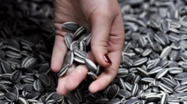 Sunflower seeds recalled for possible listeria contamination