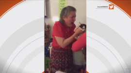 See students console teacher on loss of her cat with 2 new kittens