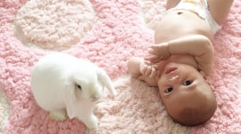 See a baby cuddle bunnies in adorable photographs