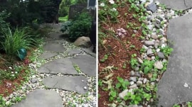 How to kill driveway weeds and safely get rid of garter snakes