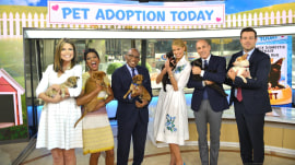 First-time pet adoption tips for families