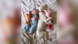 These cuddle buddies are blowing up Instagram