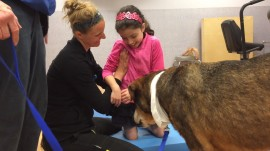 Special dogs provide love, motivation to help kids heal
