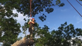 TODAY takes you up a 180-foot tree in the Amazon