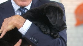 TODAY's puppy with a purpose now has a name, and it's…