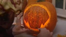 Expert carver creates Charlie pumpkin for TODAY