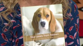 Favorite Things: Inspiring stories for dog lovers, light luggage