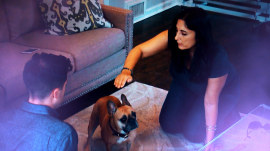 Pet psychics claim they can read your pet's mind (for a price)