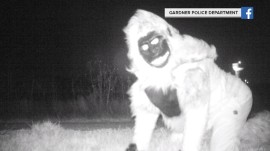 Pranksters in animal costumes trick police searching for mountain lion