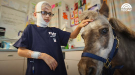 Petie the pony has brought love to sick kids for 18 years