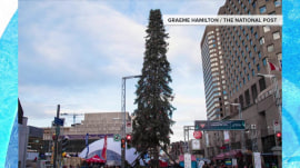 Nice try, Montreal, but your thin Christmas tree can't top Rockefeller Center's
