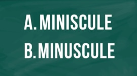 'Miniscule' or 'minuscule': Can you spell the most commonly misspelled words?