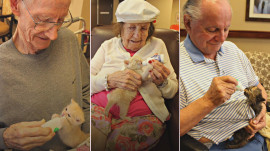 Alzheimer's patients and tiny kittens find joy helping one another