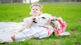 Orphaned calf becomes a part of the cutest family