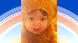 Listen to the 'roar' this adorable tot in lion costume makes