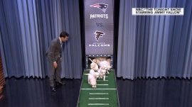 Super Bowl fever peaks (but what do Jimmy Fallon's puppies predict?)