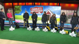 See TODAY puppy Charlie's family reunion with mom, dad and siblings