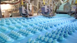 Take a peep at how Peeps are made