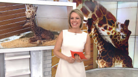 April the Giraffe FINALLY gives birth, but what should baby's name be?